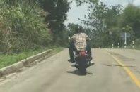Tudi kače predstavljajo nevarnost za motoriste