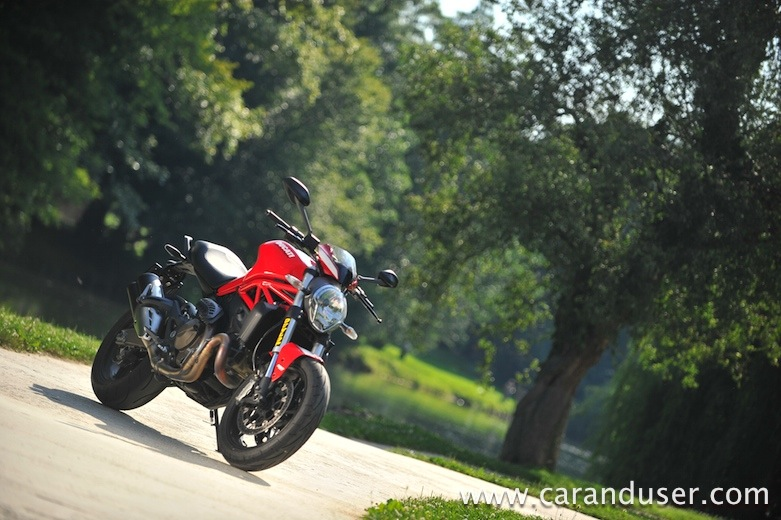 ducati monster821 stripe14
