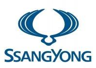 Ssang Yong išče novega