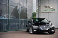 Jaguar izdelal šparovčka